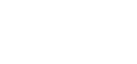 TDS logo white